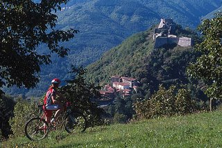 Mountain bike in Versilia